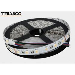 Taśma 300 LED WRGB (biała zimna) Talvico 5m, SMD5050, DC 24V TC-WRGB60-5050/IP20