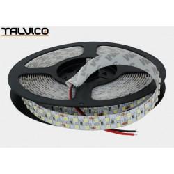 Taśma 3528/1200 LED Talvico biała zimna 5m, DC 24V, TC-W240-3528-24/IP20