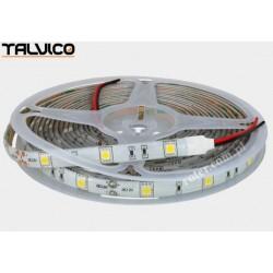 Taśma 5050/150 LED Talvico biała neutralna 5m, DC 12V, TC-NW30-5050/IP65