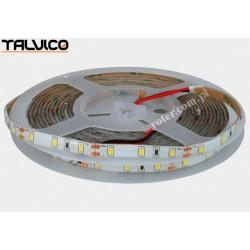 Taśma 3528/300 LED Talvico biała neutralna 5m, DC 12V, 4.8W/m TC-NW60-5008/IP65