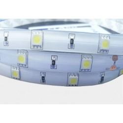 Taśma 150 LED 5050 biała zimna w silikonie