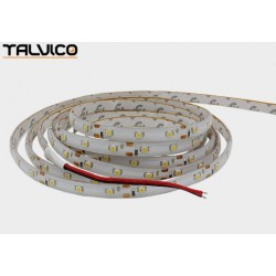 Taśma 300 LED Talvico biała ciepła 5m, SMD3528, DC 12V, 4.8W/m TC-WW60-5008/IP65
