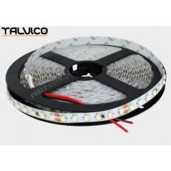 Taśma 5050/300 LED Talvico biała zimna 5m, DC 12V, TC-W60-5010-3/IP65